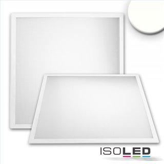 LED Panel Professional Line 600 UGR19 8H, 36W, Rahmen weiß RAL 9016, neutralweiß, dimmbar