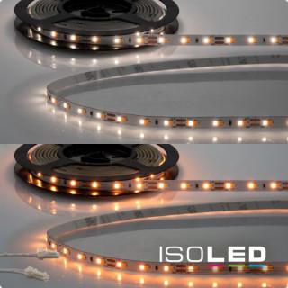 LED CRI919/940 MiniAMP Flexband, 12V, 10W, weißdynamisch, 250cm, beidseitiges Kabel mit male-Stecker